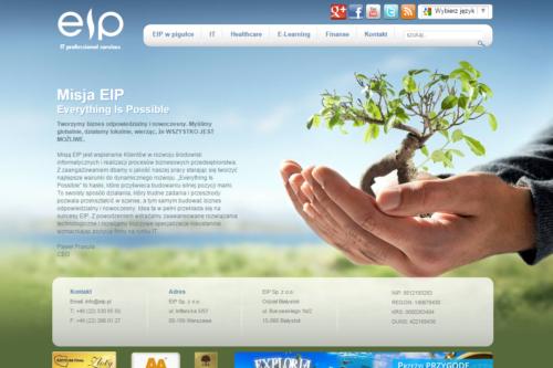 EIP przejęło Netserve