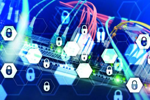Ochrona sieci jako ekosystem