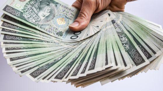 Zarobki IT: komu najwięcej płacą